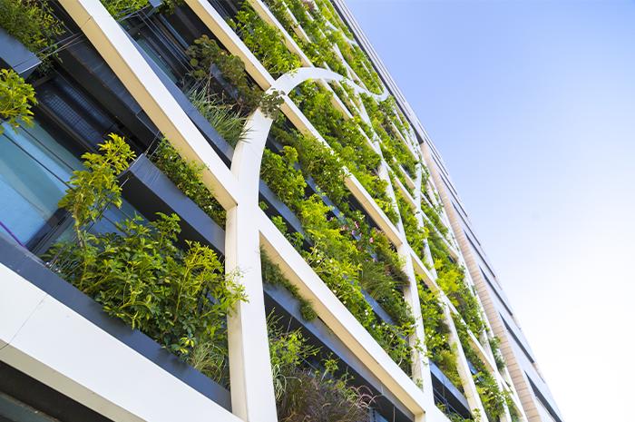Webinaire Vegetalisation des villes - SOCOTEC