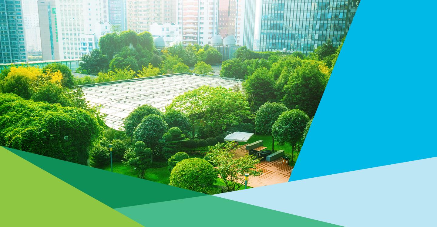 Webinaire les experts SOCOTEC vegetalisation des villes